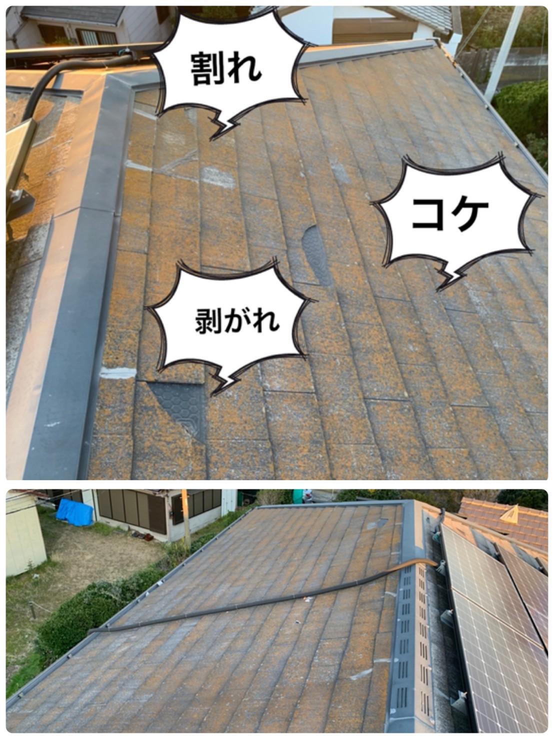 屋根のコケ、なぜダメなの?