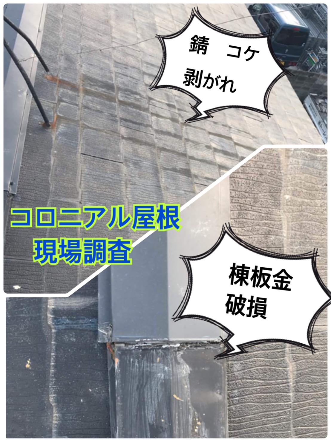 コロニアル屋根🔍現場調査🔎
