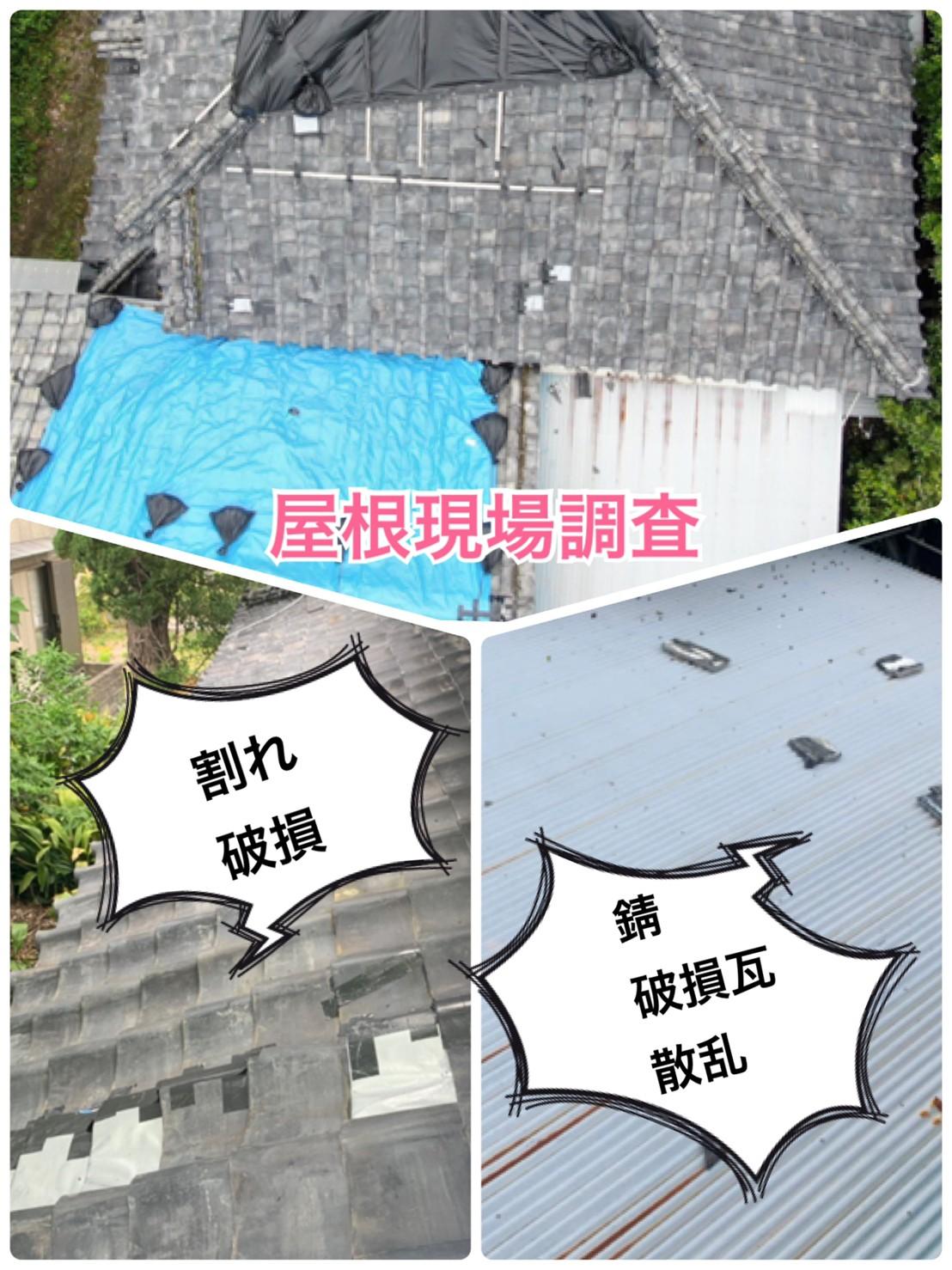 瓦屋根の現場調査🔎