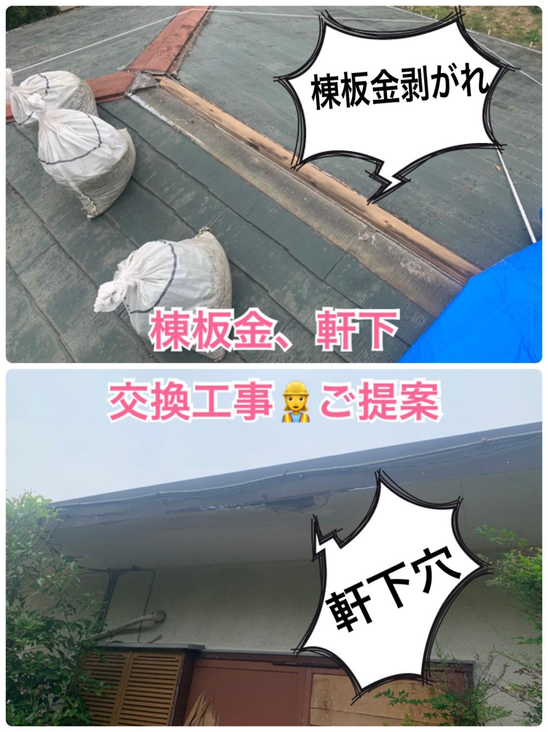棟板金・軒下の天井🔧交換工事のご提案📜